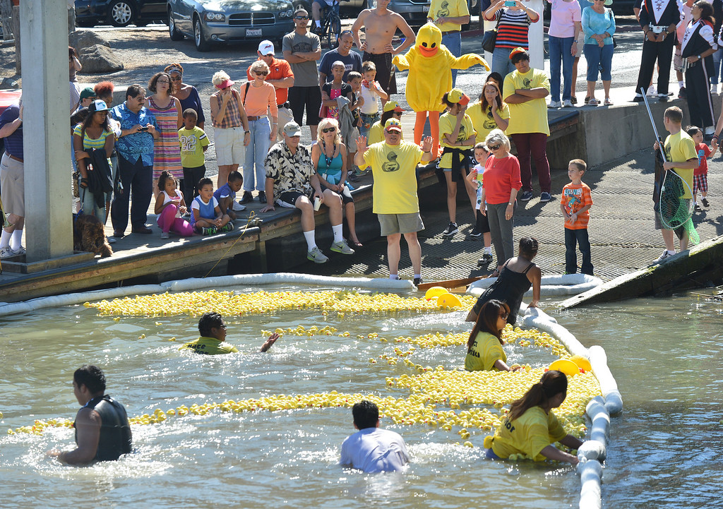 . Spectators stand at the finish line and watch a group of yellow ducks float in the water at the Pittsburg Marina during the yellow duck races in Pittsburg, Calif., on Saturday, Sept. 28, 2013. The races benefit the Pittsburg Marching Show Band, which is trying to raise money so they can participate in the New Year\'s Day parade in London. (Dan Rosenstrauch/Bay Area News Group)