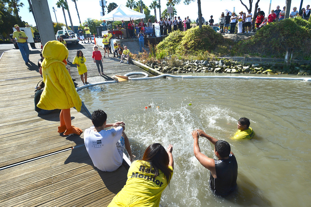 . Members of the Circle K International at Los Medanos College in Pittsburg, splash water to try to get six ducks to the finish line during the final yellow duck race at the Pittsburg Marina in Pittsburg, Calif., on Saturday, Sept. 28, 2013. The races benefit the Pittsburg Marching Show Band, which is trying to raise money so they can participate in the New Year\'s Day parade in London. (Dan Rosenstrauch/Bay Area News Group)