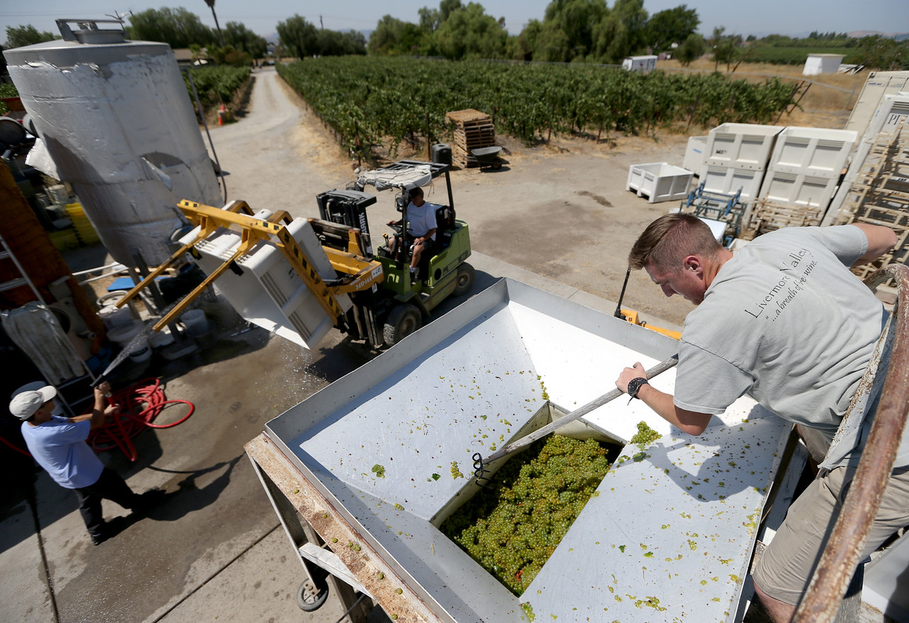 Page Mill Winery Processing Wine Grapes Livermore