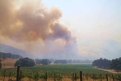 Smoke from the Soberanes Fire is seen from Carmel Valley's Galante Vineyards on Aug. 6, 2016. (Courtesy of Jack Galante)