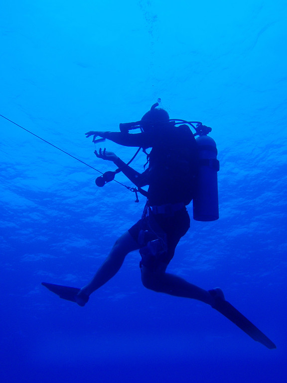 . Monterey Bay Aquarium Research Institute researcher Steve Haddock captures a specimen on a dive in the Pacific Ocean. Haddock created a process for tracking the movement of jellyfish through global seas, called JellyWatch. (Courtesy of Sea McKeon)