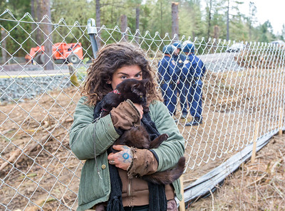 Tara Dragani hugs her cat after the CHP officers handed it to her. The officers retrieved the cat from one of the platforms in the tree. Photo by Steve Eberhard