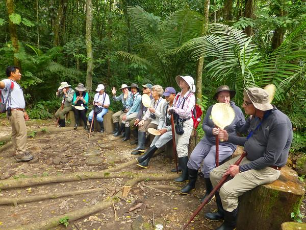 Jungle Lecture
