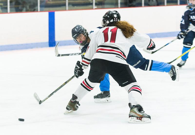 Marblehead V Peabody girls hockey 3