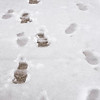 2 2 21 Snowstorm coverage 6