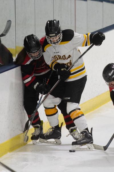 FenwickGirlsHockey225-Falcigno-06
