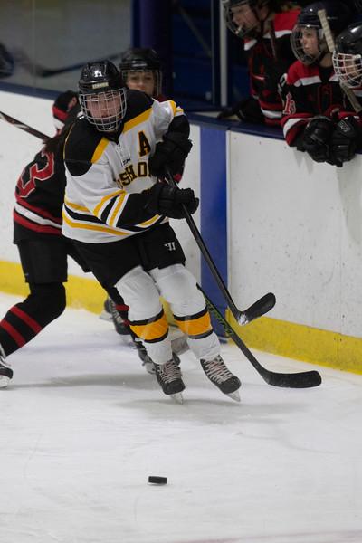 FenwickGirlsHockey225-Falcigno-05
