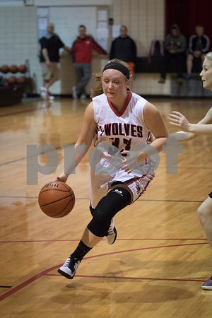 Sam Buckner for Shaw Media.<br /> Olivia Harvell drives to the basket in the regional quarterfinal against Earlville-Leland on Monday February 6, 2017.