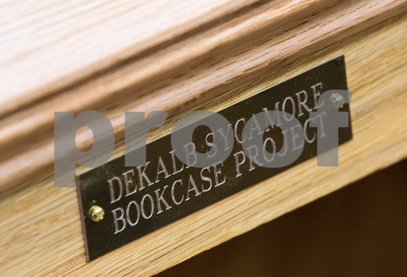 dnews_0207_Bookcase_Building_03
