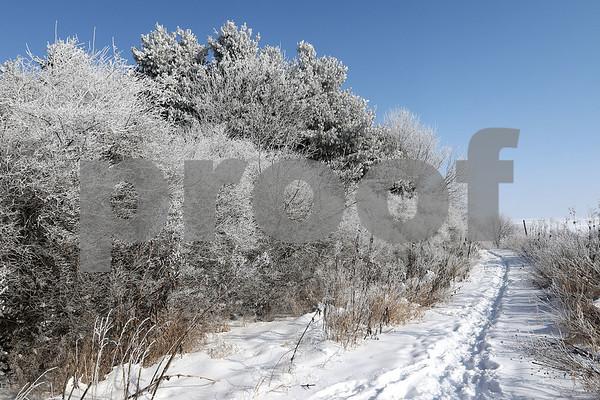DDC_0215_IceAndFog04