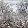DDC_0215_IceAndFog09
