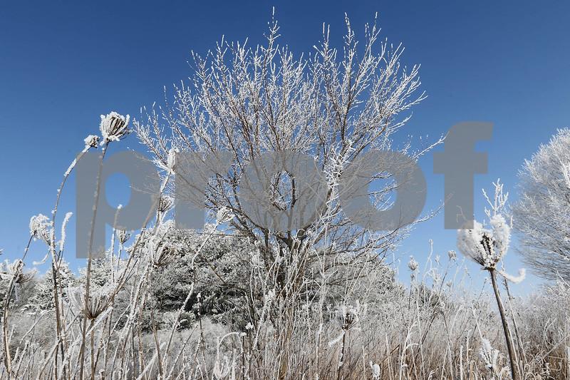DDC_0215_IceAndFog05