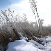 DDC_0215_IceAndFog06