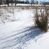 dc.0217.snow08