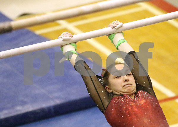 hspts_0217_State_Gymnasts_09