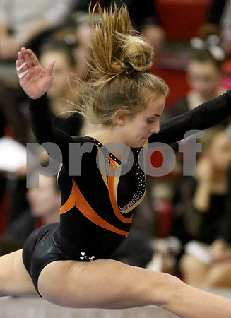 dspts_0217_State_Gymnasts_23