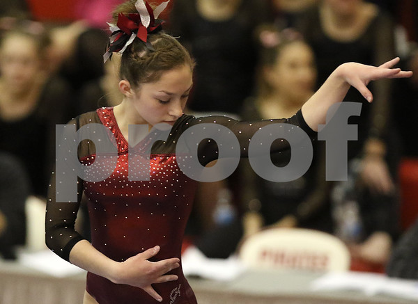 hspts_0217_State_Gymnasts_02
