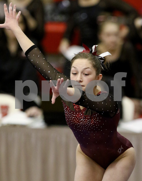 hspts_0217_State_Gymnasts_25