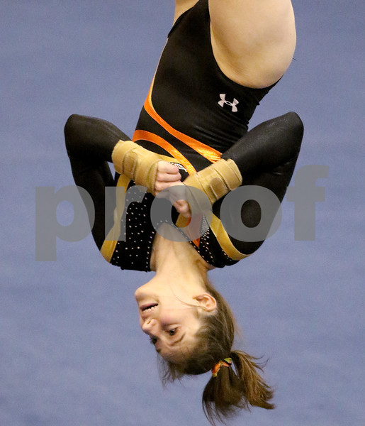 dspts_0217_State_Gymnasts_13