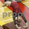 hspts_0218_State_Gymnasts_05