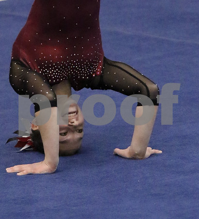 hspts_0218_State_Gymnasts_03