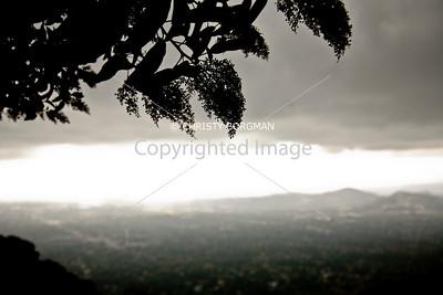 View from Sam Merrill Trail