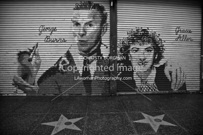 The Protectors of Hollywood Boulevard