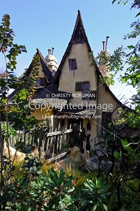 Witch's House/Spadena House
