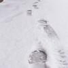 3 13 18 Snow Storm 8