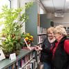 3 16 18 Books in Bloom