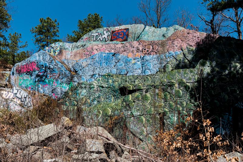 3 21 20 Lynnfield Skull Cliff evergreen 4