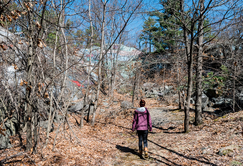 3 21 20 Lynnfield Skull Cliff evergreen 5