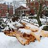 Lynn030419-Owen-strom stand alone02