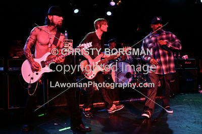Dave Navarro, Chris Chaney, Matt Sorum and Sen Dog