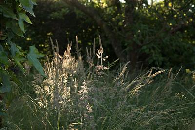 struer_2021-06-25_201043