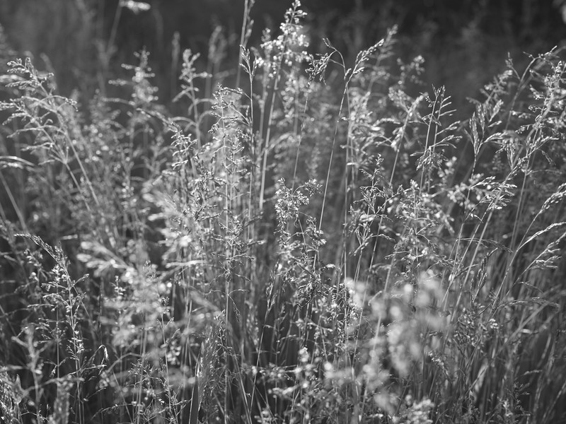 struer_2021-06-09_201223