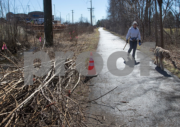 dnews_0307_Cut_Trees_01