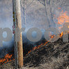 dnews_0308_Brush_Fire_03