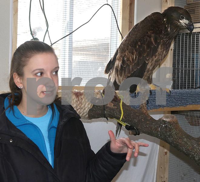 dc.031718.injured.eagle02
