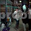 knews_thu_302_STC_mountedrangers2