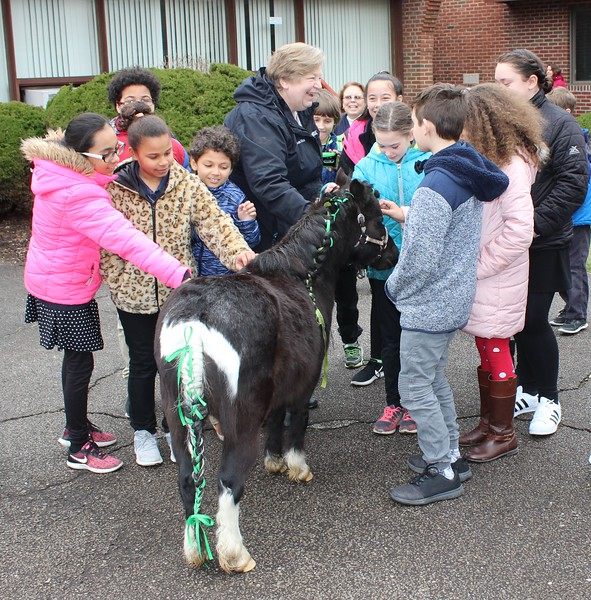 Tawana Roberts - The News-Herald <br> Our Shepard Lutheran School students got the opportunity to pet Lake Erie College's miniature horse gelding Stormy on opening day of the book fair on March 28. Lake Erie College education students in EDE 308 Community Services are hosting the book fair from March 28 to April 12 to raise money to give local children new books.