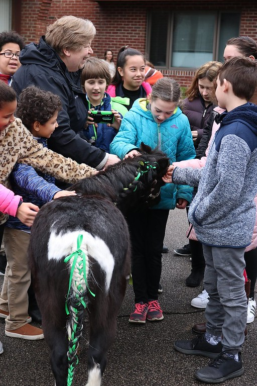 . Our Shepard Lutheran School students got the opportunity to pet Lake Erie College�s miniature horse gelding Stormy on opening day of the book fair on March 28. Lake Erie College education students in EDE 308 Community Services are hosting the book fair from March 28 to April 12 to raise money to give local children new books.