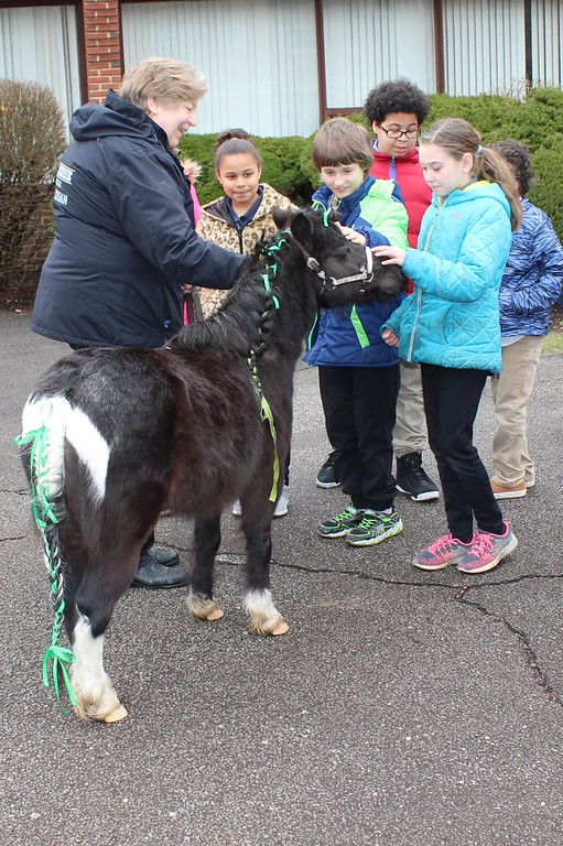 . Tawana Roberts - The News-Herald <br> Our Shepard Lutheran School students got the opportunity to pet Lake Erie College�s miniature horse gelding Stormy on opening day of the book fair on March 28. Lake Erie College education students in EDE 308 Community Services are hosting the book fair from March 28 to April 12 to raise money to give local children new books.