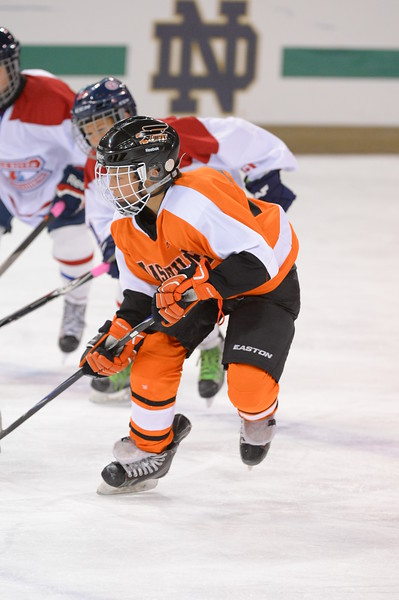 Nashville Flyers-Peewee A2 Gold