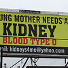 Lynn041618-Owen-kidney billborad1