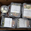 foodpantry402-Falcigno-05