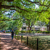 Exploring Savannah and Bonaventure Cemetery