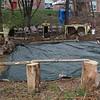 Nahant042219-Owen-Forrest playground groundbreaking01