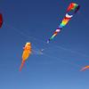 Lynn042318-Owen-Kites1