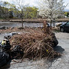 4 27 19 Saugus River cleanup 2